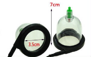 VacuumPumps/PumpAndElectroCups-2.jpg